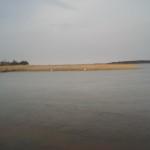 Łabędzie na połowie lodu - Jezioro Święcajty